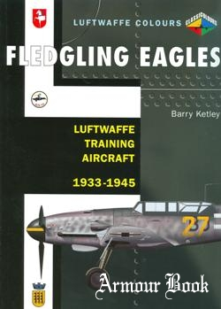 Fledgling Eagles: Luftwaffe Training Aircraft 1933-1945 [Luftwaffe Colours]