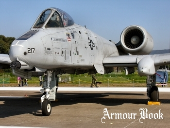 US PACAF A-10 [Walk Around]
