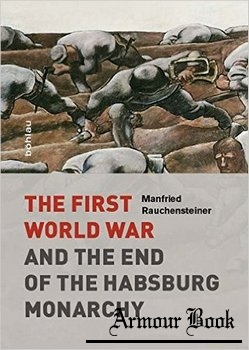 The First World War and the End of the Habsburg Monarchy, 1914-1918 [Boehlau Verlag]