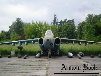 SU-25 [Walk Around]