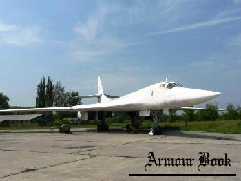 Tu-160 [Walk Around]