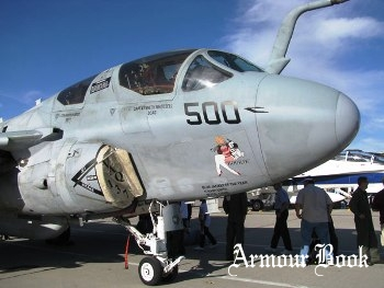 Grumman EA-6B Prowler [Walk Around]