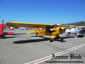 Piper J-3C-65 Cub [Walk Around]