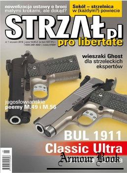 Strzal 2018-01