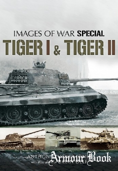 Tiger I and Tiger II [Images of War Special]