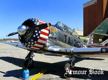 North American AT6/SNJ Texan [Walk Around]