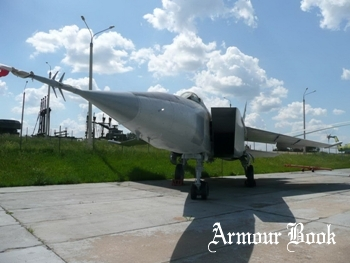 MiG-25RB [Walk Around]