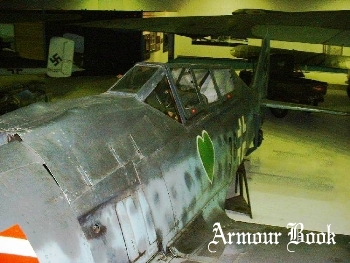 Focke-Wulf Fw-190S [Walk Around]