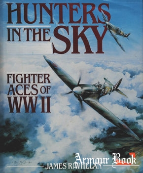 Hunters in the Sky: Fighter Aces of WWII [Regnery Gateway]