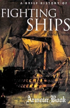 A Brief History of Fighting Ships [Robinson Publishing]