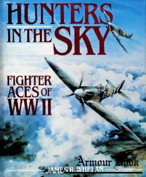 Hunters in the Sky: Fighter Aces of WW II [Regnery Gateway]