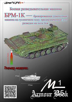 Боевая разведывательная машина БРМ-1К [KesyaVOV]