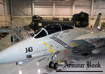 Grumman F-14B Tomcat [Walk Around]