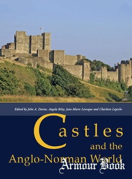 Castles and the Anglo-Norman World [Oxbow Books]