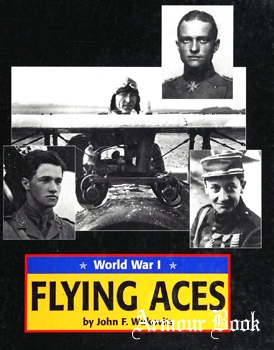 Flying Aces: World War I [American War Library]